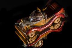 Schnecken- und Spielzeugauto Stockbilder
