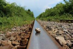 Schneckenoberteil auf Eisenbahnen Stockbilder