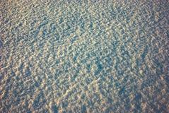 Schnee 2010 Lizenzfreie Stockfotos