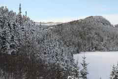 Schnee abgedeckt lizenzfreie stockfotografie