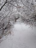 Schnee abgedeckte Spur stockfotografie