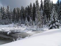 Schnee abgedeckter Nebenfluss und Teich Stockfotografie