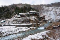 Schnee-Affe-Park, Yamanouchi, Japan Lizenzfreies Stockbild