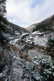 Schnee-Affe-Park, Yamanouchi, Japan Lizenzfreie Stockbilder