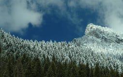 Schnee auf Bäumen und Berg im Frühjahr Stockbild