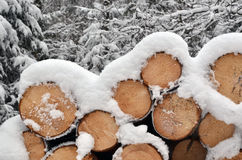 Schnee auf Bauholzstapel Stockfotos