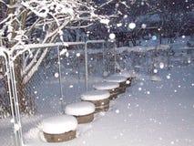 Schnee auf Baum Stockfoto