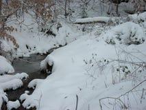 Schnee auf The Creek Lizenzfreies Stockbild