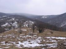 Schnee auf dem Berg Stockfotos