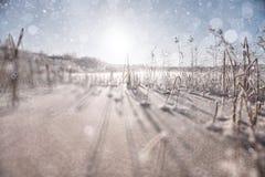 Schnee auf dem Gebiet Lizenzfreies Stockbild