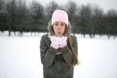 Schnee auf den Palmen Lizenzfreie Stockfotografie