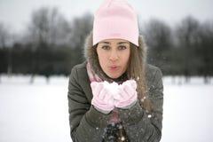 Schnee auf den Palmen Stockfoto