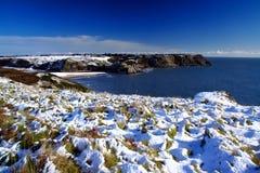 Schnee auf der Küste Stockbilder