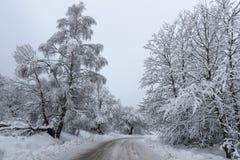 Schnee auf der Straße Stockfotos