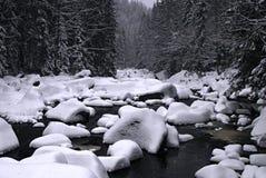 Schnee auf einem Fluss Stockfotografie
