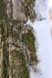 Schnee auf Kabel Lizenzfreies Stockbild
