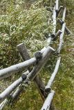 Schnee auf Lattenzaun in den Büschen, Wyoming Lizenzfreie Stockfotografie