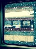 Schnee auf Tannenbaumzweigen Lizenzfreies Stockfoto