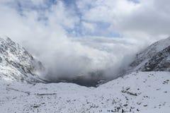 Schnee auf Tannenbaumzweigen Stockbild