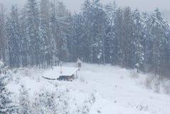 Schnee. Bäume 2 Stockfotografie