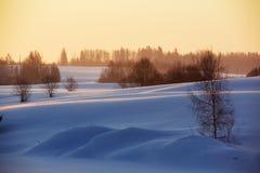 Schnee bedeckt archiviert stockfotografie