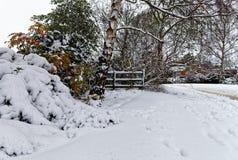 Schnee bedeckte Bäume und Büsche Stockfoto