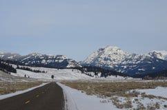 Schnee bedeckte Berge Stockfotografie