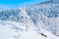 Schnee bedeckte Berge in Montenegro Stockfoto