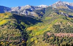 Schnee bedeckte Berge und gelbe Espe Lizenzfreies Stockfoto