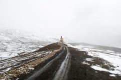 Schnee bedeckte Buddha-Statue in Langza-Dorf, Spiti-Tal, Himachal Pradesh lizenzfreie stockfotos