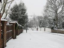 Schnee bedeckte gezeichnete Straße des Winters Baum Stockfotografie