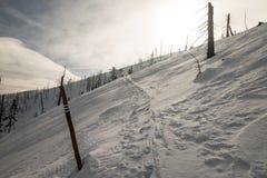 Schnee bedeckte Grünes und roter markierter Wanderweg brüllen Hügel Barania Gora in Bergen Winter Beskid Slaski in Polen lizenzfreie stockbilder