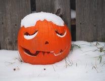 Schnee bedeckte Jack O'Lantern Stockbild