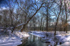 Schnee bedeckte Nebenfluss im Wald Lizenzfreie Stockfotos