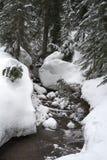 Schnee bedeckte Nebenfluss neben Berg Seymour-Schneeschuhspur lizenzfreies stockfoto
