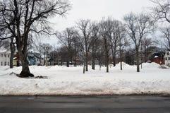 Schnee bedeckte Park Stockbild