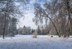 Schnee bedeckte Park Stockfotos