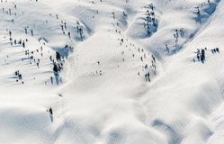 Schnee bedeckte reinen Berg mit Einzelbäumen Stockbild
