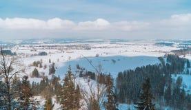 Schnee bedeckte Wald in den Alpenbergen stockfoto