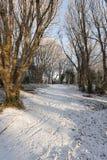 Schnee bedeckte Weg Stockfotos