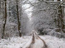 Schnee bedeckte Weg in einer winterlichen Landschaft Stockfotos