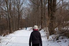 Schnee bedeckte Weg mit dem Leutegehen Stockbild