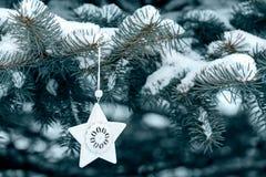 Schnee bedeckter Tannenbaum und -stern Stockfotos