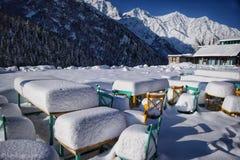 Schnee-Café lizenzfreie stockfotografie
