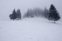 Schnee deckte Bäume in den Bergen ab Russland, UralJanuary, Temperatur -33C Lizenzfreie Stockbilder