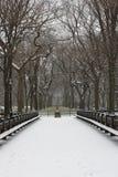 Schnee deckte Bäume und Rasen in Central Park ab Stockfotos