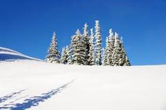 Schnee deckte Berg ab Lizenzfreie Stockbilder