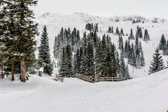 Schnee deckte Berg ab Stockbilder