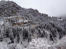 Schnee deckte Berg ab stockfotografie