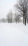 Schnee deckte Gasse in einem Winterpark ab Lizenzfreies Stockbild